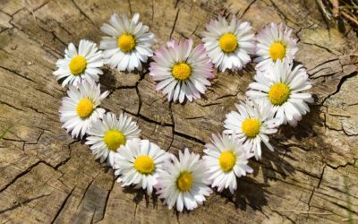 O co chodzi z czystą miłością?